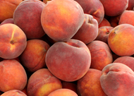 Poached Peaches with Yoghurt